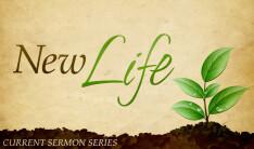 New Life Series