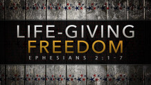 Life-giving Freedom