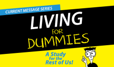 Living for Dummies Series