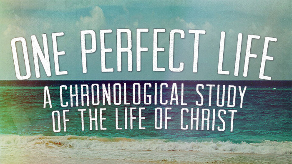 One Perfect Life Study